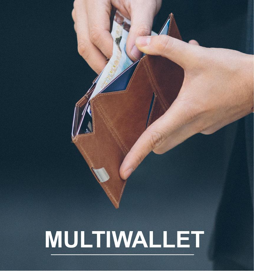 Exentri Multiwallet wallet coins