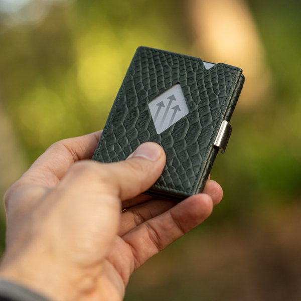 card wallet in snake leather